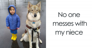 40+ Pictures That Prove That Dogs And Kids Are A Match Made in Heaven
