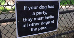 10+ Brilliantly Hilarious Dog SignBoards That Are Goals
